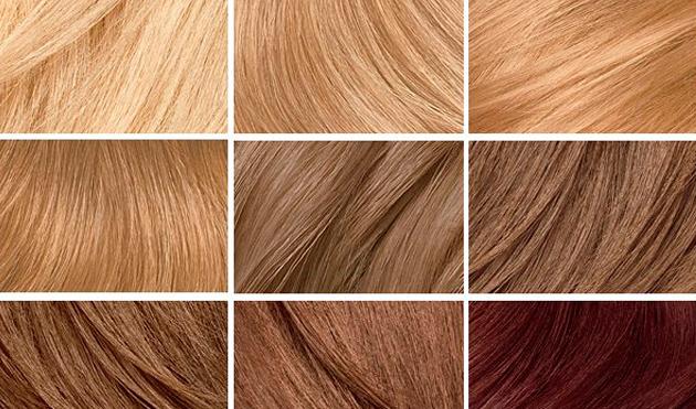 Зависит ли толщина волос от их цвета?